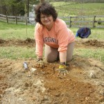 And my wife, the Vineyard Goddess, did most of the planting.